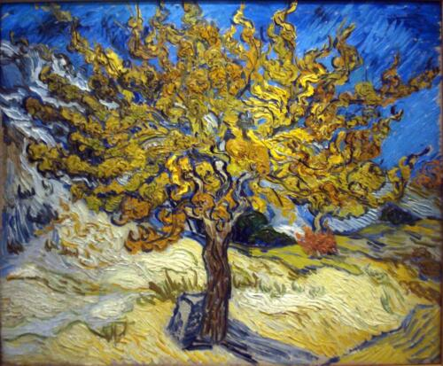 The_Mulberry_Tree_by_Vincent