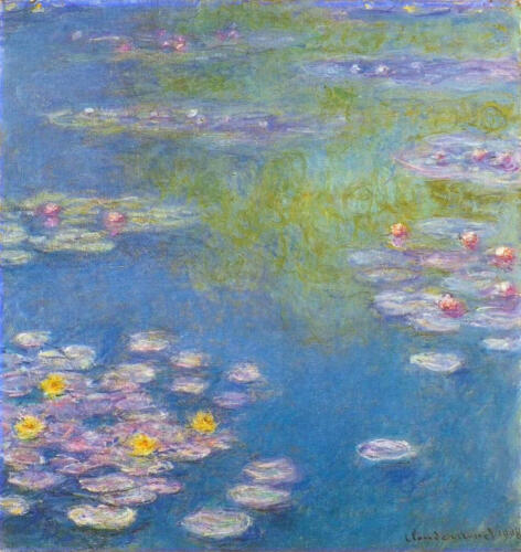water-lilies-29